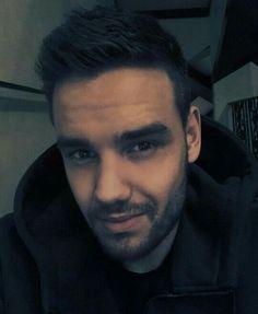 Liam Payne- my love