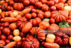 Stock Photo : Fresh red tomatoes on table Red Tomato, Royalty Free Images, Tomatoes, Stock Photos, Fresh, Table, Army, Creative, Gi Joe