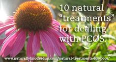 Natural Treatments for PCOS.   If there was one health issue that responded the best to diet and lifestyle changes, PCOS would be it!
