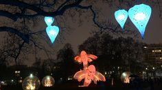 Parc de la Tête d'Or : A la nuit tombée, le parc ouvre les portes d'un univers féérique et paisible. Des végétaux et des fleurs scintillants déploient leurs bourgeons et corolles dans des serres cristallines au milieu des libellules et carpes géantes. Oeuvre signée Christophe Martine.