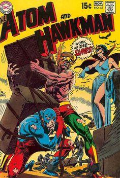 Atom and Hawkman #45