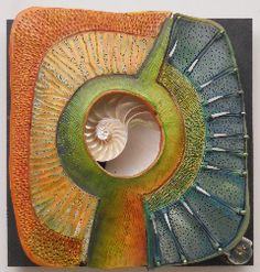 Carolina Creations | VG Windows to the Earth Chambered Nautilus 11091 | Fine Art Contemporary Gift Gallery