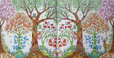 Enchanted Forest - Forest. Gekleurd door Marianne in het boek: Het betoverde woud.