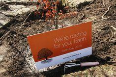 La piece de resistance: Earth Day signage #earthday2013