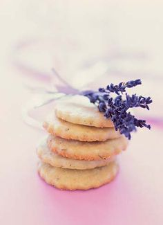 Michigan Lavender Festival | A Symphony for the Senses. This has tons of cool home/handmade items from spa scrubs to baby wipes! All using lavender. No need to go to festival- most recipes on site!
