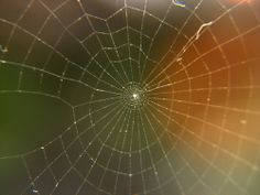 spiral spiderweb ~ photo used through Creative Commons by Sudhamshu on Flickr