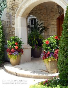 Hibiscus thriller Container gardening i love the sand colored rough stone and the smooth stone framing the front porch Just need to smooth out that front step making it a. Container Flowers, Container Plants, Container Gardening, Outdoor Planters, Garden Planters, Outdoor Gardens, Front Porch Flowers, Front Door Planters, Front Yard Landscaping