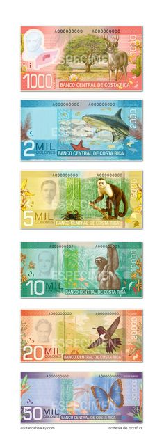 Costa Rican collones beautiful money I couldn't even hold that one with the shark :x