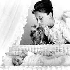 Happy Mothers Day! Here's Audrey Hepburn, her Yorkie Mr. Famous, and son Sean Hepburn Ferrer photographed by Richard Avedon, 1960 ❤️