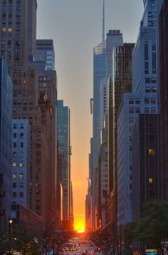 """This was one of the best times to be in the city, she thought: the weather was beautiful and the sun cast a golden glow on everything, even the pieces and places of Manhattan that weren't very attractive."" Boxing Out Chapter 2"