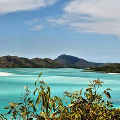 The beautiful Whitehaven Beach on Whitsunday Island. #Queensland #Australia