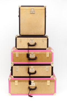 chic luggage