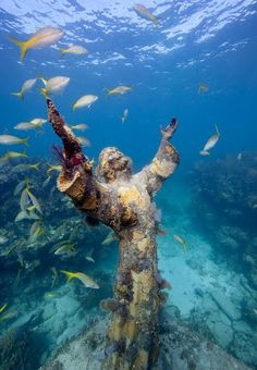 Christ of the Abyss... a submerged bronze statue of Jesus, located in the Mediterranean Sea.