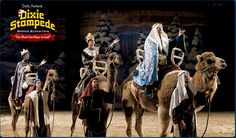 Come see the true meaning of Christmas at Dixie Stampede this Christmas!