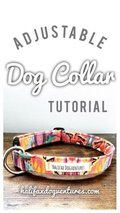 Learn how to make this super cute, super easy adjustable dog collar. DIY adjustable fabric dog collar tutorial: halifaxdogventures.com