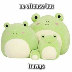 13 inch Squishmallow Wendy the Frog, Green Kawaii Plush, Cute Plush, Beanie Babies, Cute Stuffed Animals, Cute Animals, Plushies, Softies, Cute Frogs, Frog And Toad