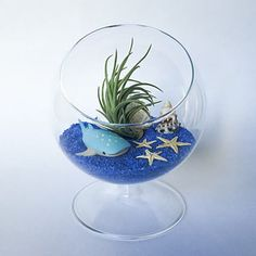 This ocean terrarium. | 21 Things You Need To Turn Your Home Into A Mermaid's Grotto