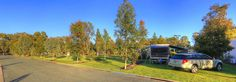 Site accommodation - Powered Site - BIG4 Deniliquin Holiday Park. Our large, powered sites are lusciously grassy and have waterfront and shady sites available.