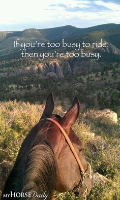 One can never be too busy for riding Or horses
