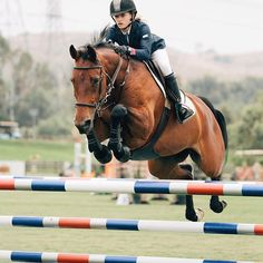 The most important role of equestrian clothing is for security Although horses can be trained they can be unforeseeable when provoked. Riders are susceptible while riding and handling horses, espec… Equestrian Outfits, Equestrian Style, Equestrian Fashion, Equestrian Problems, Dressage Horses, Jumping Horses, Types Of Horses, English Riding, Show Jumping