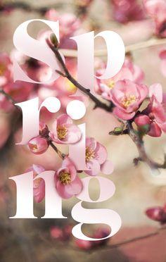 *~ Windchime of Spring~*