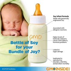About 25% of American babies are fed GMO soy infant formula. For alternatives we've pulled together make your own recipes, donor milk links, certified organic formula and other resources here: http://gmoinside.org/non-gmo-infant-formula-resources/ Sign our petition to Good Start, Enfamil and Similac to reformulate their GMO laden formulas. http://gmoinside.org/take-action/whos-making-your-baby-a-lab-rat/