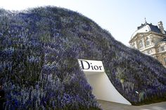 The setting for Christian Dior Spring 2016