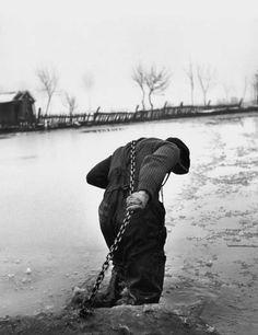 Werner Bischof, Homme Tirant in Bateau, Hongrie 1948