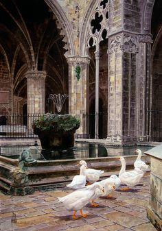 catedral de barcelona, by Ramón Vilalta Alabró
