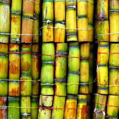 sugar cane Hawaii