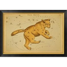 """Global Gallery 'Ursa Major, 1825' by Jehoshaphat Aspin Framed Graphic Art on Canvas Size: 24"""" H x 34"""" W x 1.5"""" D"""