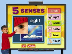 Five Senses Interactive Activities at Lakeshore Learning Five Senses Preschool, My Five Senses, Senses Activities, Smart Board Activities, Smart Board Lessons, Kindergarten Science, Interactive Activities, Kindergarten Classroom, Teaching Science