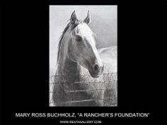"""Such A Noble Expression ~ Pencil horse drawing called """"Ranchers Foundation."""" by Mary Ross Buchholz. A Limited Edition print. Horse Drawings, Animal Drawings, Art Drawings, Pencil Drawings, Arte Equina, Horse Sketch, Horse Artwork, Charcoal Art, Cowboy Art"""