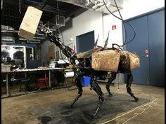 Robot - BigDog Throws Cinder Blocks with Huge Robotic Face-Arm