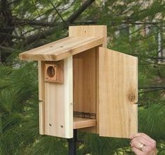 The overhanging roof and extensions of the entrance hole creates a defense against predators. Note that there is also no perch, this stops predators from sitting and reaching in. The birds can easily enter the bird box without the perch so this isn't a problem. The birds nesting inside are guaranteed safety.