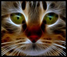 fractal kitty