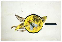 fruit fly by charley harper Old King, Charley Harper, Fruit Flies, Christen, Graphic Design Art, Giclee Print, Artist, Prints, Illustrations