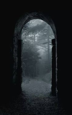 Shadow/ombre Scary/effrayant Nowhere Forest/Foret Mystery Mist Dark/sombre Photo. Dark Forest, Magic Forest, Forest Art, Doorway, Belle Photo, White Photography, Creepy Photography, Horror Photography, Halloween Photography