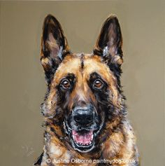 german shepherd dog portrait by Justine Osborne