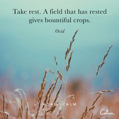 Take rest. A field that has rested gives bountiful crops. — Ovid Quote from the Daily Calm
