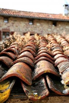 Architectural detail of grunge aged roof clay tiles