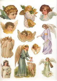 Angel Vignetttes - Chrissy Wilmshurst - Picasa Web Albums