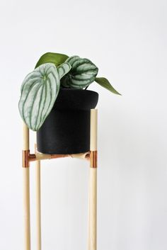 Wood & Copper DIY plant stand following instructions in the Urban Jungle book (DIY idea by @craftifair )