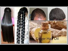 Secret of best Indian hair revealed, DIY Homemade Ginger Hair Oil for Long Hair, Soft Hair, Smooth Hair, Thick hair and Healthy Hair! Extreme Hair Growth, Hair Growth Tips, Hair Remedies For Growth, Hair Loss Remedies, Soft Hair, Thick Hair, Natural Hair Loss Treatment, Ginger Hair, Beauty