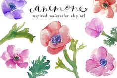 Check out Watercolor Anemones Clip Art by Angie Makes on Creative Market