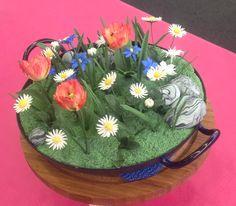 Gänseblümchen, Wiesentulpen, Blaustern und Federnelke