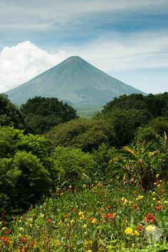 Ometepe, San Salvador, Pollo Animal, Alberta Canada, Merida, Jamaica, Places To Travel, Places To Go, Managua