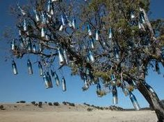 Tales from the Bayou: The Legend of the Bottle Tree
