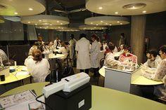 Laboratorio abierto
