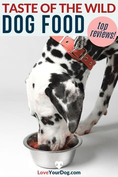 Thinking of testing Taste of the Wild's Dog Food formulas with your pup? We compare cost, quality, ingredients & more in this Taste of the Wild dog food review. #loveyourdog #dogfoodreviews #tastofthewilddogfood #bestdogfood #dogfoodingredients #dogfood #doghealth Dog Food Reviews, Grain Free Dog Food, Best Puppies, Best Dog Food, R Dogs, Wild Dogs, Healthy Choices, Your Dog